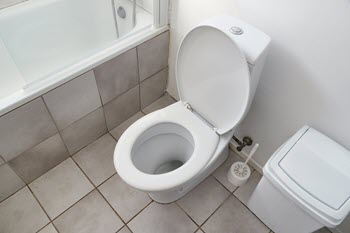 clogged drains and toilet