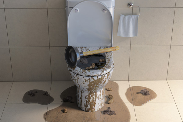 image of an overflowing toilet and toilet clog